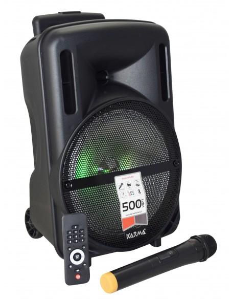 CASSA AMPLIFICATA 500W C/TROLLEY E MICROFONO