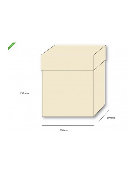 SCATOLA BOX SURPRICE CM. 50X50X65